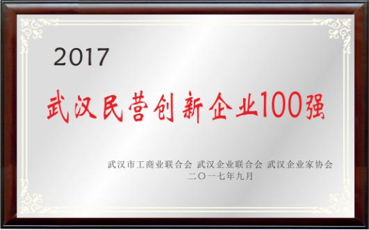 武汉民营创新企业100强